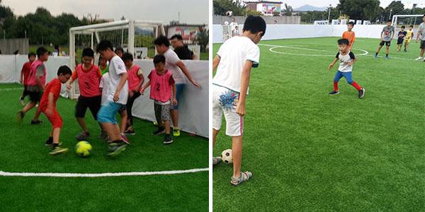 Sports in Taiwan