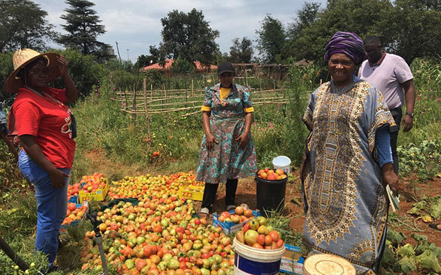 Africa self sustainability